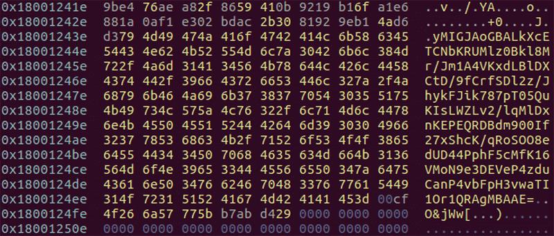 DelfsCakeにハードコードされたRSA公開鍵